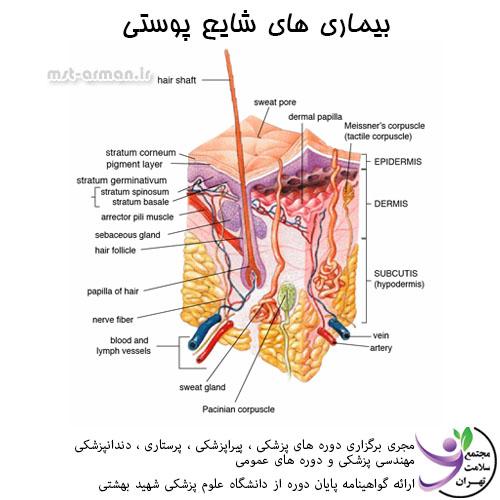 دوره تکنسین داروخانه - بیماری های پوستی